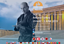 9th International Aikido Festival
